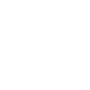 Platinum System Guarantee